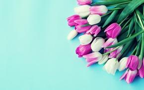Обои colorful, тюльпаны, flowers, tulips, bouquet