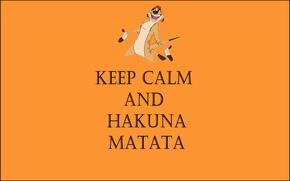 Картинка жизнь без забот, тимон, keep calm and hakuna matata