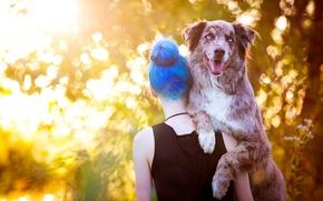 Картинка морда, девушка, свет, природа, поза, фон, спина, собака, позитив, хозяйка, солнечно, плечи, голубоглазая, держит, боке, …