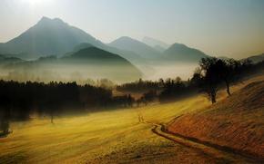 Картинка дорога, лес, деревья, пейзаж, горы, природа, туман, холмы, поляна, горизонт, дымка, тропинка