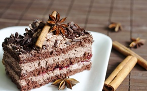 Обои анис, сладости, торт, десерт, тарелка, крем, шоколад, пирожное, пряности, корица