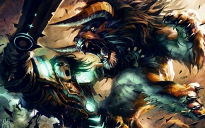 World of Warcraft, Trading Card Game, Кошка, Друид, Бой, схватка обои
