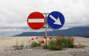 Картинка дорога, маки, знаки