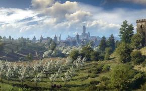Картинка CD Projekt RED, The Witcher 3: Wild Hunt, Ведьмак 3: Дикая Охота