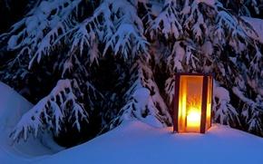 Картинка зима, свет, снег, дерево, ель, фонарь, light, winter, snow, tree, lantern