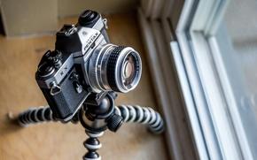 Обои камера, pentax kx, макро