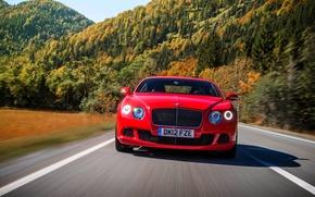 Картинка Красный, Bentley, Continental, Дорога, Деревья, Лес, Машина, Капот, Фары, Номер, Передок