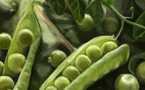 Картинка зеленый, еда, горошек, арт, стрючок