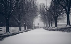 Картинка зима, дорога, снег, деревья, снежинки, ветки, природа, забор