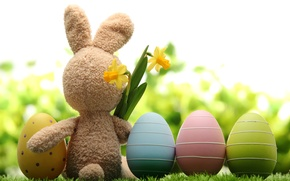 Картинка трава, цветы, природа, праздник, игрушка, заяц, яйца, весна, Пасха, нарциссы, Easter
