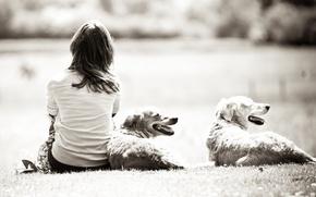 Картинка собака, обои для рабочего стола, широкоформатные обои, черно-белый, брюнетка, девушка, даль, обоя, девочка, настроения, собаки, …