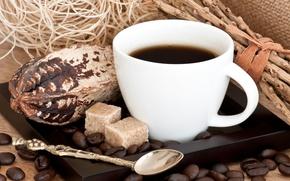 Обои чашка, кусочки, зерна, кофе, сахар, ложка, поднос