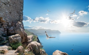 Обои море, небо, солнце, облака, лучи, птицы, камни, скалы, побережье, высота, Россия, Крым