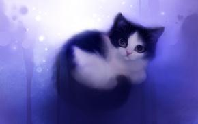 Обои кошка, wish, клубочек, взгляд, apofiss, котенок, рисунок, художник