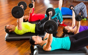 Обои fitness, weights, group, dumbbells, gym