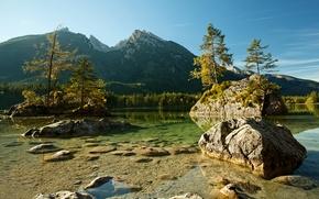 Картинка деревья, горы, река, камни, Германия, Альпы, Germany, Bavaria, Национальный парк Берхтесгаден, National Park Berchtesgaden