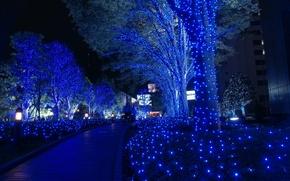 Картинка Токио, Рождество, Гирлянды