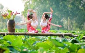 Обои лето, природа, девушки, настроение, гимнастика, йога, ножки, азиатки