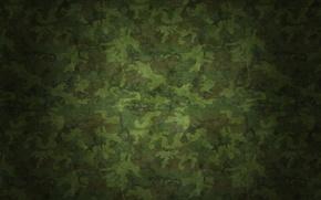 Картинка поверхность, текстура, texture, 2560х1600, Камуфляж