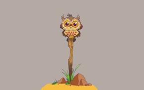 Картинка трава, камни, сова, птица, минимализм, ветка, палка, owl