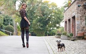 Картинка девушка, город, улица, ножки, собачка, Guenter Stoehr