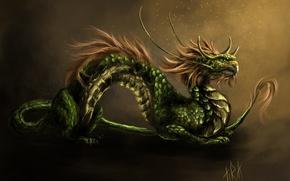 Картинка усы, дракон, арт, грива, азиатский