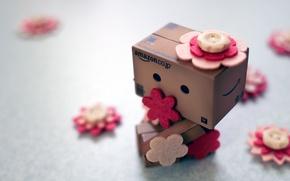 Картинка цветы, коробка, пуговицы, Danbo, amazon, коробок