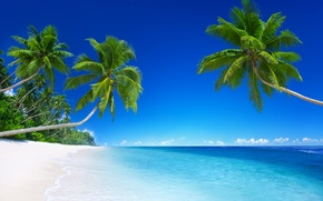 Обои песок, море, пляж, солнце, тропики, океан, берег, остров, summer, beach, sea, ocean, coast, blue, sand, ...