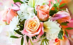 Картинка розы, букет, flowers, bouquet, roses, pastel