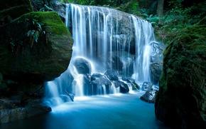 Картинка лес, природа, камни, водопад, мох