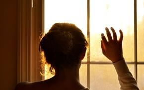 Картинка стекло, девушка, солнце, фон, widescreen, обои, настроения, волосы, рука, окно, wallpaper, пучок, разное, широкоформатные, background, ...