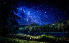 Картинка лес, небо, трава, звезды, деревья, ночь, озеро, Хорватия, Trakoscan