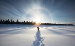 Картинка зима, лес, сугробы, путь к солнцу