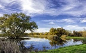 Картинка осень, небо, трава, облака, деревья, озеро, пруд