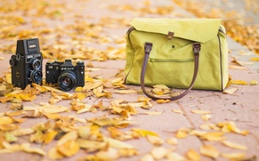 Картинка vintage, autum, road, bag, photography, fashion