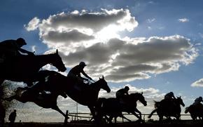 Картинка лошадь, всадник, скачки, жокей, ипподром