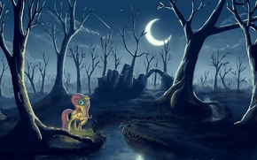 Картинка лес, ночь, луна, фонарь, пони, My little pony