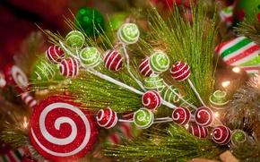 Картинка праздник, игрушки, блеск, ветка, Новый Год, Christmas, New Year, декоративная
