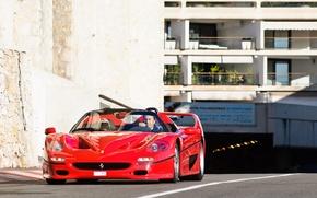 Картинка Ferrari, V12, 1995, F50