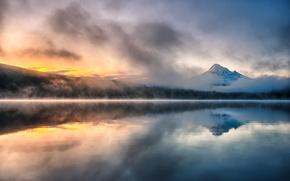 Картинка лес, горы, туман, озеро, дымка