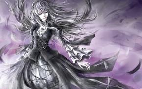 Картинка девушка, ветер, волосы, платье, арт, rozen maiden, suigintou
