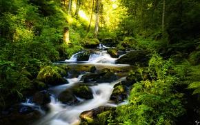 Картинка камни, водопад, лесной, деревья.