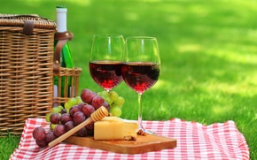 Картинка салфетка, бутылка, природа, трава, вино, красное, сыр, бокалы, пикник, корзина, виноград