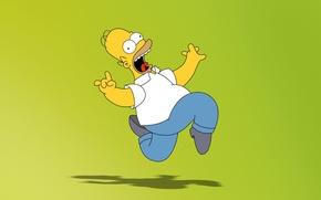 Обои зеленый, мультфильм, Симпсоны, Гомер