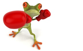 Картинка графика, лягушка, бокс, перчатки, Free frog 3d
