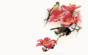 Картинка птица, минимализм, ветка, Восток, мастер, арт, живопись