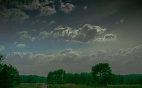 Картинка дорога, поле, небо, деревья, тучи