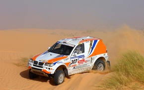 Картинка 307, Машина, Песок, Пустыня, Гонка, Rally, Dakar, Дакар, BMW, Внедорожник, Ралли