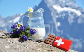 Картинка цветы, шоколад, ромашки, молоко, Альпы, швейцарский