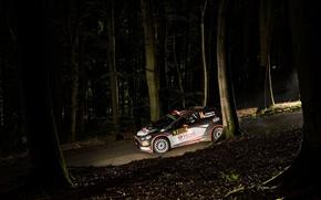 Картинка Ford, Ночь, WRC, Rally, Ралли, Fiesta, Robert Kubica